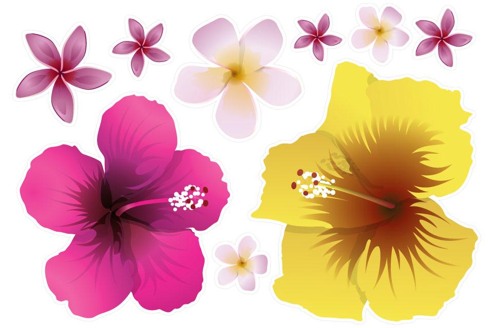 G_DIVERS_Fleurs